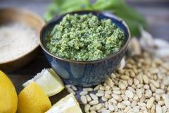 Nya Pesto och ingredienser Royaltyfri Fotografi
