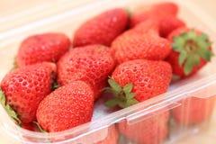 nya plastic jordgubbar för ask Arkivbilder