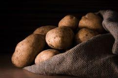 Nya potatisar i säcken Arkivbild