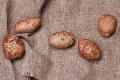 Nya potatisar på säckväv på trätabellen, bästa sikt Royaltyfria Foton