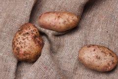 Nya potatisar på säckväv på trätabellen, bästa sikt Arkivfoton
