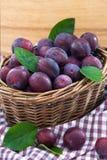 Nya purpurfärgade plommoner i en korg Royaltyfri Fotografi