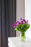 Nya purpurfärgade tulpan i ett ljust rum Arkivbilder