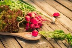 Nya rädisor med salladslökar och saltar på en trätabell Arkivbilder