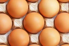 Nya rå ägg i magasin Royaltyfri Bild