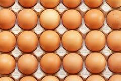 Nya rå ägg som används som bakgrund Arkivbild