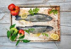 Nya rå fisk och matingredienser på tabellen arkivbild