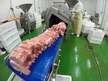 Nya rå fläskkotletter i kött som bearbetar bransch Fotografering för Bildbyråer