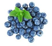 Nya, rå och mogna blåbär med mintkaramellen som är full av vitaminer Healthful och söta blåbär som isoleras på en vit bakgrund, c royaltyfria foton
