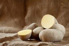 Nya rå potatisar Arkivfoton