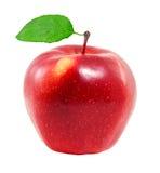 Nya röda Apple royaltyfri bild