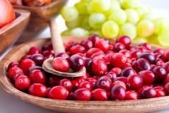 Nya röda cranberries fotografering för bildbyråer