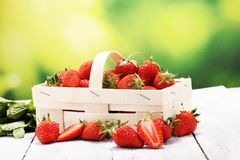 Nya röda jordgubbar i en korg Sunt fruktbegrepp fotografering för bildbyråer