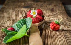 Nya röda jordgubbar i träsked Royaltyfria Bilder