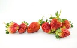 nya röda mogna jordgubbar Royaltyfri Fotografi