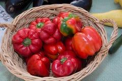 Nya röda peppar i en vide- korg Royaltyfri Bild