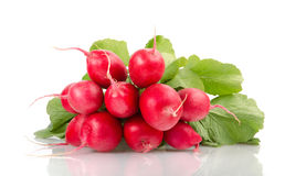 Nya röda rädisor med gröna sidor Royaltyfri Fotografi