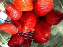 Nya röda saftiga smakliga smaskiga jättegoda jordgubbar Royaltyfri Bild