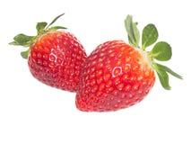 Nya röda strawberrys på vit bakgrund Royaltyfri Foto