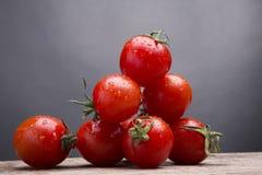 nya röda tomater Fotografering för Bildbyråer