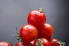 nya röda tomater Royaltyfri Fotografi