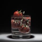 Nya röda tomater i vatten som isoleras på en svart bakgrund Bubblor av vatten Förgrena sig av tomater Royaltyfria Bilder