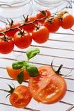 Nya röda tomater med basilikabladet Arkivbild