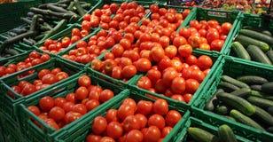 Nya röda tomater och gurkor på marknaden arkivfoto