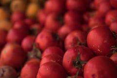 Nya röda tomater på en fruktställning royaltyfri bild