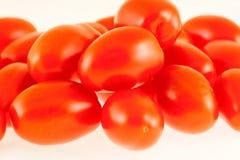 Nya röda tomater som framläggas på vit bakgrund Arkivfoton