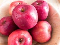 Nya röda våta äpplen med vattendroppar Royaltyfri Bild