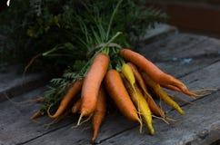 Nya rena morötter på en vit trätabell Bakgrund av den bästa sikten för nya grönsaker Ny grupp av morötter på vit bakgrund Royaltyfri Foto
