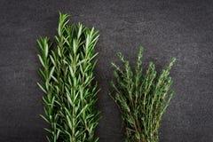 Nya Rosemary Thyme Herbs Arkivfoton