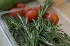 Nya rosmarin och körsbärsröda tomater i en plast- behållare arkivbilder