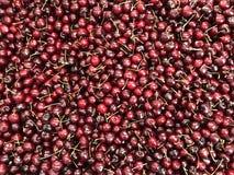 Nya söta körsbär på fruktmarknad arkivfoto