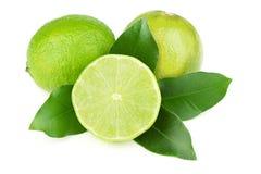 nya saftiga limefrukter Royaltyfri Bild
