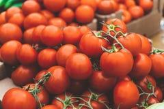 Nya saftiga organiska tomater Royaltyfri Foto