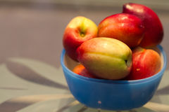 Nya saftiga persikor i en bunke Royaltyfri Bild