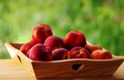 Nya saftiga persikor i träkorg Royaltyfria Bilder