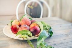 Nya saftiga persikor med sidor på mörk trälantlig bakgrund Fotografering för Bildbyråer