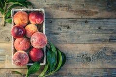 Nya saftiga persikor med sidor på mörk trälantlig bakgrund Royaltyfri Foto
