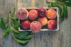 Nya saftiga persikor med sidor på mörk trälantlig bakgrund Royaltyfri Bild