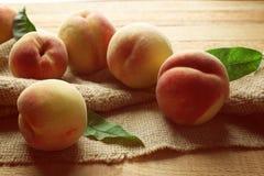 Nya saftiga persikor på att hänga löst Arkivbild