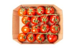 Nya saftiga röda körsbärsröda tomater i en ask som isoleras på vit bakgrund Top beskådar Arkivfoto