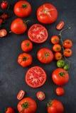 Nya saftiga tomater Arkivfoto