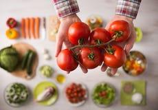 nya saftiga tomater Royaltyfri Fotografi