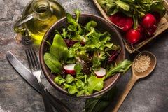 Nya salladtomater och blandad gräsplanarugula, mesclun, mache Royaltyfria Foton