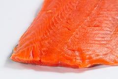 Nya Salmon Fillet Close Up på vit bakgrund royaltyfri bild