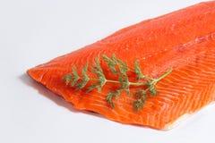 Nya Salmon Fillet Close Up på vit bakgrund med dill Royaltyfri Bild