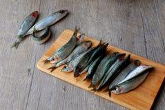 Nya sardines på träbräde Arkivbilder